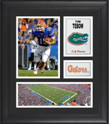 "Tim Tebow Florida Gators Framed 15"" x 17"" Collage"