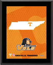 TENNESSEE VOLUNTEERS (STATE) 10x13 PLAQUE (SUBL) - Mounted Memories