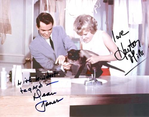 """'THAT DARN CAT"""" Hayley Mills and Dean Jones signed 10X9 1/2  colored photo"""