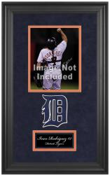 "Detroit Tigers Deluxe 8"" x 10"" Team Logo Frame - Mounted Memories"