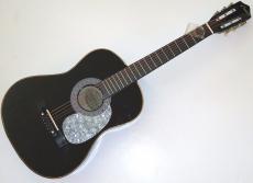 Tim McGraw signed Country music legend acoustic guitar w/coa Shotgun Rider