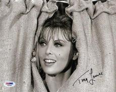 TINA LOUISE SIGNED AUTOGRAPHED 8x10 PHOTO GINGER GILLIGAN'S ISLAND PSA/DNA
