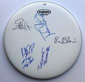 Tom Petty and the heartbreakers signed drumhead group autographed psa dna loa