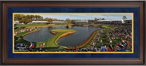 "TPC Sawgrass Framed 10"" x 30"" Hole #17 PGA Tour Photograph"
