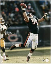 "Brian Urlacher Chicago Bears Autographed 16"" x 20"" vs Green Bay Packers Photograph"