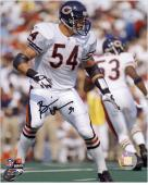Brian Urlacher Chicago Bears Autographed 8'' x 10'' Vertical Pose Photograph - Mounted Memories