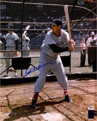 "Ted Williams Boston Red Sox Autographed 16"" x 20"" Swinging In Cage Photograph"