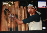 Ralph Macchio signed 11 x 14, Karate Kid, The Outsiders, Proof, PSA/DNA